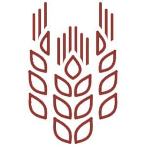 фильтрационное оборудование для пищевой промышленности